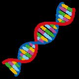 遺伝子から調べる最新ダイエット『B-GENOM』を試してみる。