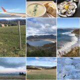 2017年9月タスマニア自浄の旅#5-牡蠣は健康飲料だった?タスマニア・メルボルン旅まとめ